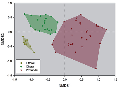 Chironomid communities as indicators of local and global